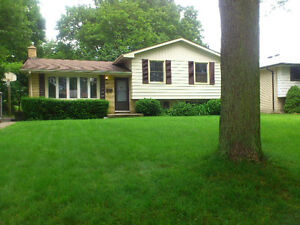 Family Home for Rent on Quiet Tree Lined Steet Available July 1