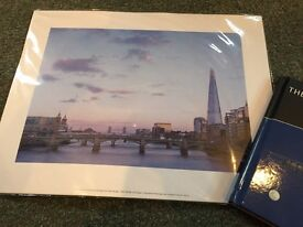 Shard picture and book