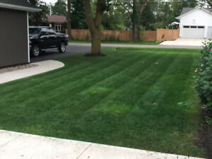 Grass Cutting in Fonthill & Welland