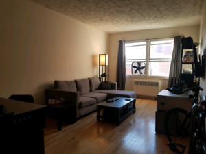 Large 1 Bedroom Apartment Available (Lease Takeover)