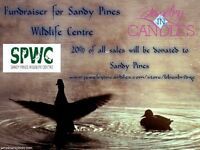Fundraiser for Sandy Pines