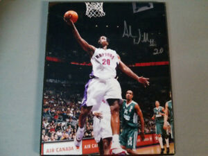 NBA Toronto Raptors mounted and signed Alvin Williams