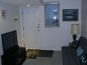 1 Bedroom Furnished Basement Suite