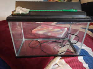 Fish Tank, Filter, and Much More!