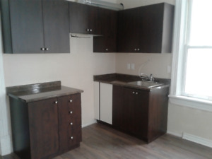 1 bedroom plus den apartment for rent in Palmerston / TG Minto