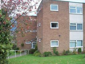 1 bedroom flat in Hallam Court, Dronfield, S18