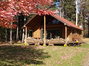 GORGEOUS LOG HOME WITH WATER FRONT TREES TRANQUILITY