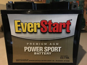 EverStart AGM Powersport Battery ES-T16L