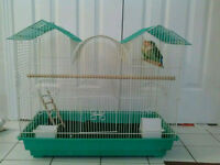 2 lovebirds with cage