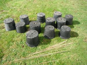 Container Gardening, 12 Large Black Plastic Assorted Sized Garde