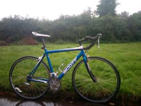 Bike Scott (adult)