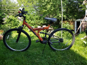 mountain bike in best condition