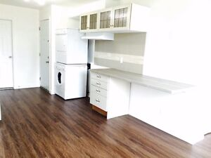 New price - Renovated studio available 5218 D'Iberville