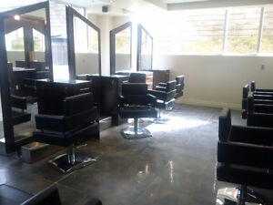 Well furnished high end hair salon Kitchener / Waterloo Kitchener Area image 5