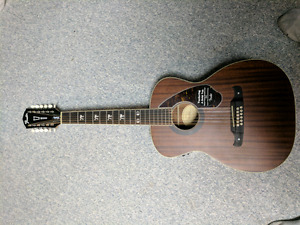 Tim Armstrong 12 String Acoustic.  Brand New.  $350 obo