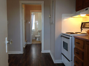 1 BEDROOM APARTMENT CENTER CITY: Available December 1 St. John's Newfoundland image 4