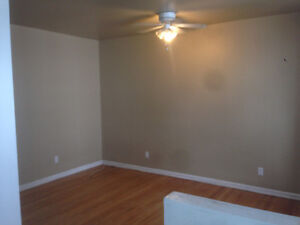 Beautiful 1 Bedroom apartment... Downtown living!