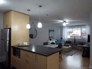 Bright and Spacious Modern 2 Bd Units near Dal and Kings College