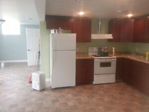 2 bedroom basement/ground level apt for rent. recently renovated