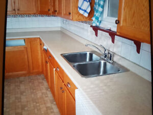 Countertop with double stainless steel sink