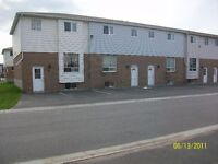 Winter Special - Three Bedroom Townhouse Available Nov 1st