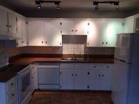 Whirlpool Elite Range Oven, Fridge and Dishwasher