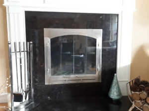 Beautiful Custom Made Brushed Nickle and Glass Fireplace Doors