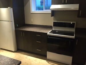 Large newly built 2 bedroom basement suite in the NE