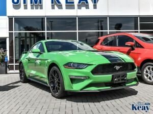 2019 Ford Mustang EcoBoost Fastback  - Bluetooth - $127.34 /Wk