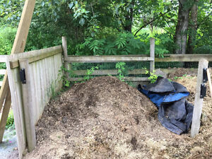 FREE 2 Year Old Horse Manure