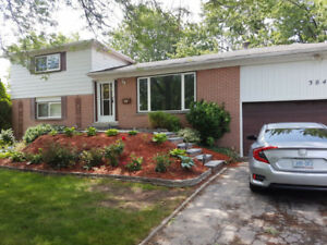 House - 2bdrm 1 bathroom for rent in Bronte - Oakville GTA