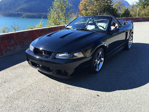 2001 Ford Mustang GT/COBRA Convertible