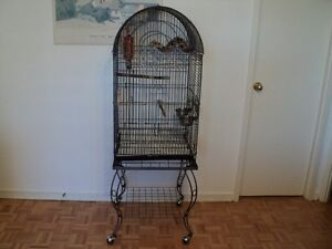 Bird cage for sale, Cockatiels, Concurs and small parrots.
