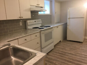 Newly Renovated Basement Apartment For Rent!