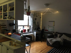 SUMMER SUBLET - 1 Bedroom Downtown