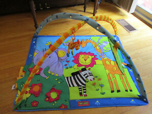 Tiny Love Play Mat with Arches