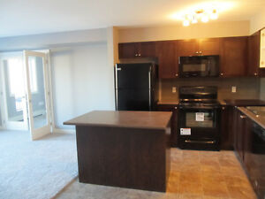 BEAUTIFUL Estevan Condo