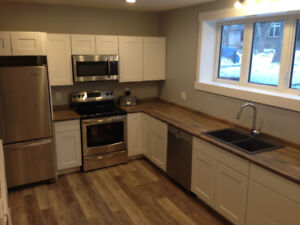 Premium Basement Suite in Old Lakeview
