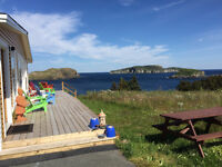 Very large home -- 35 minutes from the city; near Tors Cove