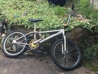 Chrome BMX