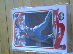 FLEER TRADITION TIM RAINES OUTFIELD MONTREAL EXPOS BASEBALL