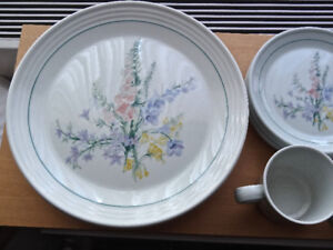 Dinner/Desert Plates Bowls Cups Saucers Royal Doulton Shady Lane