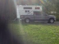 Palomino Bronco pop up camper 1251