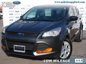 2016 Ford Escape S  -  Cruise Control - Low Mileage