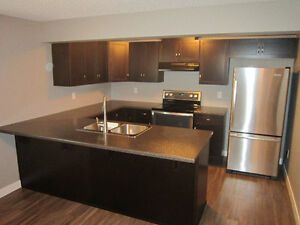 BEAUTIFUL 2 BED 1 BATH BASEMENT SUITE SUMMERWOOD!!!
