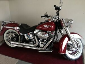 *LAST CHANCE* SOFTAIL DELUXE