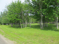 Property for sale near Kouchibouguac Park Reduced! Reduced!