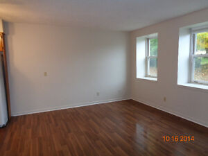 Cozy 2 bedroom in Clinton Stratford Kitchener Area image 2
