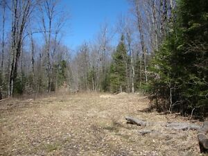 Denbigh Hunting Land Belleville Belleville Area image 3