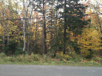 Wooded lot for sale in Irishtown